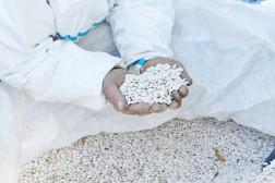 Critère qualité n°4 : le haricot tarbais garanti une traçabilité totale