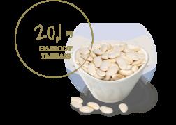 haricot tarbais 20μg de vitamine b9