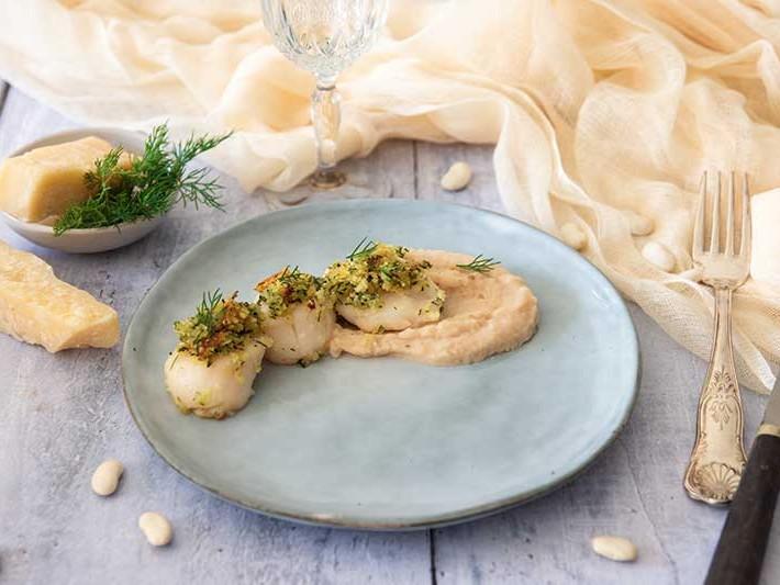 Recette St jacques gratinées et crème de haricots tarbais